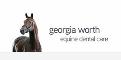 Georgia Worth Equine Dental Care