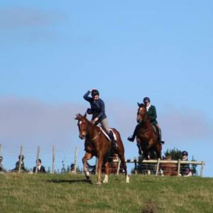Experienced Allrounder.. Now hunting with Wairarapa Hunt Club...!!