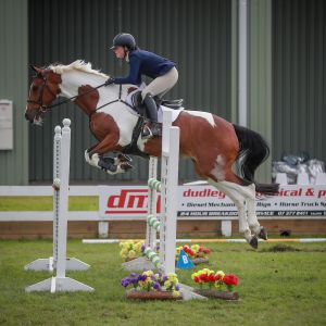 Handsome and Talented Jumper