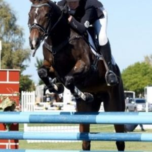 OUTSTANDING YOUNG EVENT HORSE