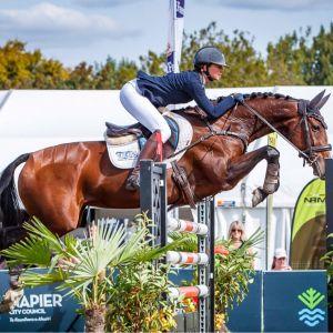Super JR/ProAm/YR mare or 4* eventer