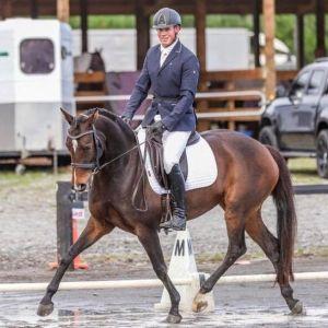 Future Dressage Horse