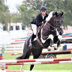 Eye Catching Pinto with Outstanding Jump