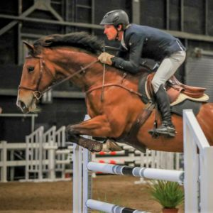 Beautiful and reliable Show Jumper/Eventer/Show Hunter