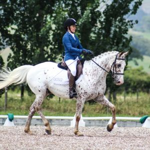 UNCOMPLICATED ALL ROUNDER SCHOOLMASTER