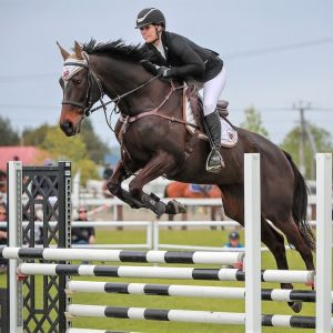 Super fun and straightforward Show Jumper