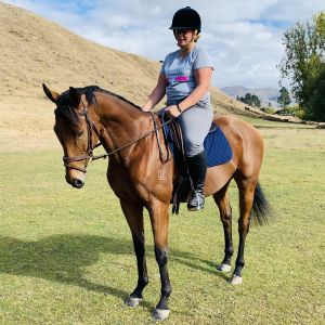 Horse for sale: Lovely competitive mount