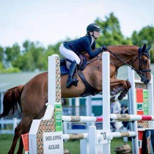 Horse for sale: Delicious HM