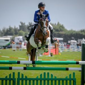 Horse for sale: Talented Multi-Disciplined Show Jumper