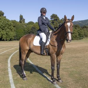 Horse for sale: Stunning Big Dressage Prospect