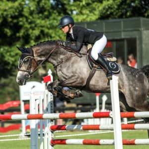 Horse for sale: Exciting 5yr