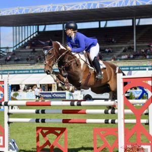 SOHO, Ultimate JR/AR Horse
