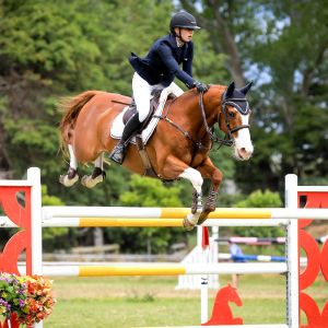 Top young rider/grand prix showjumper