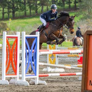Competitive Junior Rider Horse