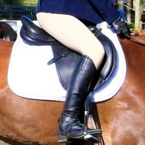 David Paul Regis M2 CC Saddle