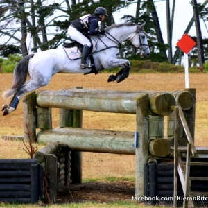 Horsey Things To Do This Weekend