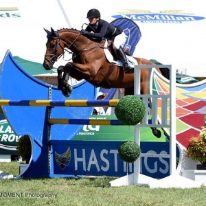 Former Racehorse Comes Good to Take Opening World Cup Round