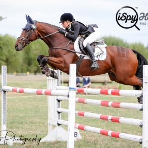 Pottinger Fourth in CCI5*-L at Adelaide
