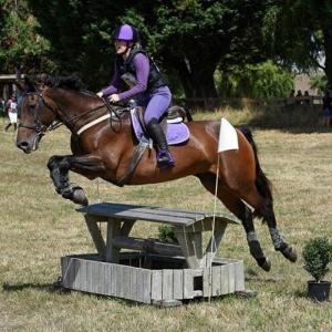 MY HORSE HERO -Rosalie.