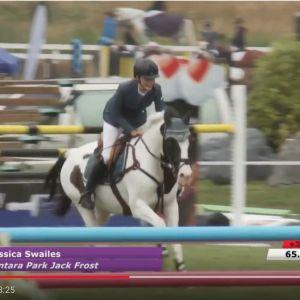 Well known Grand Prix Pony - Pintara Park Jack Frost