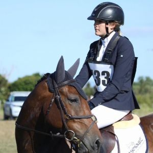 Horse for sale: MULTI-DISCIPLINED SMALL HORSE OR A WOULD/COULD BE PONY