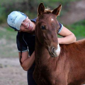 Pony Warmblood Jumping/Dressage Future
