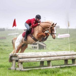 Spunky, fun and safe kids pony