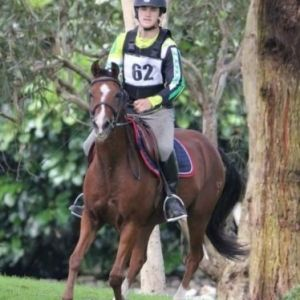 Multi-Disciplined Outstanding Pony by Hilkins Denali