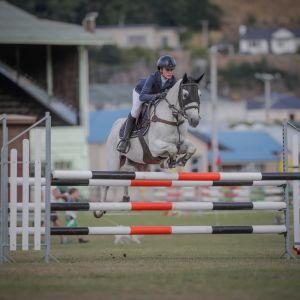 Showjumping Pony Schoolmaster