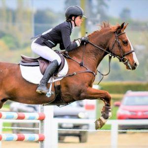 Waiotahi Belle-SJ pony