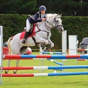 Full Height Allrounder Pony