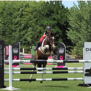 **Honest Show Jumping Pony**