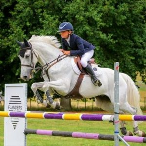 Super Fun All Round Show Jumping/Eventing Pony