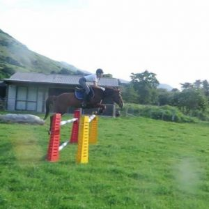Lovely Allrounder, Jumping Potential