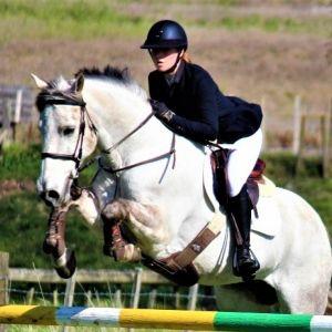 Superstar Full Size 12yo Pony