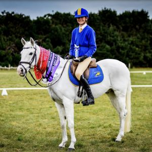 Fun, safe, competitive allround pony