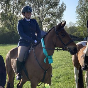 Super all rounder pony