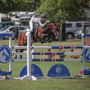 Grand Prix Pony