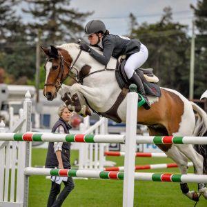 "Horse for sale: GP Pony ""Rednalhgih Cowan"""