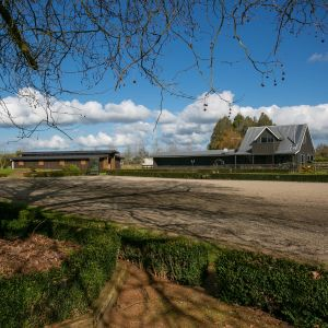 Equestrian Excellence - 440A Marychurch Road, Tamahere