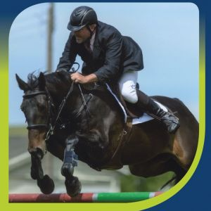 Equestrian Finance:East Bay Finance