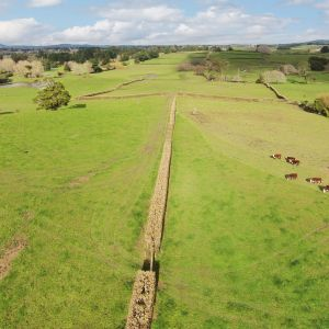 Stunning Bare Block of land in Karaka