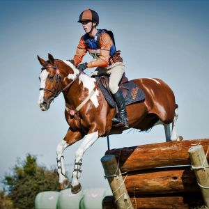 Bizzie Canoodling - Performance & Jumping stallion available for service