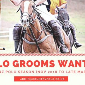 EXPERIENCED GROOMS REQUIRED
