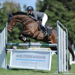 Potential junior/amateur horse