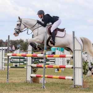 Horse for sale: Competitive 1* Eventer