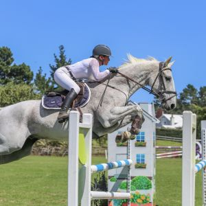 Super Young/Junior/Amateur Rider Mount
