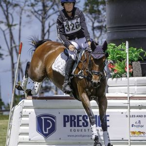 Exceptional Young Rider Eventing Horse