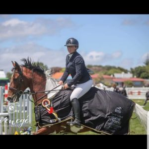Super Amateur rider horse