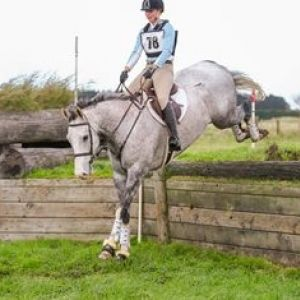 Horse for sale: Super Cool Smokey